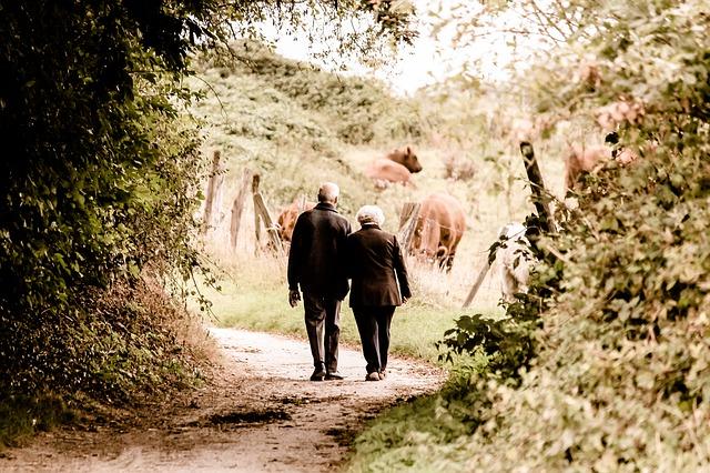 Onnellinen vanha pari